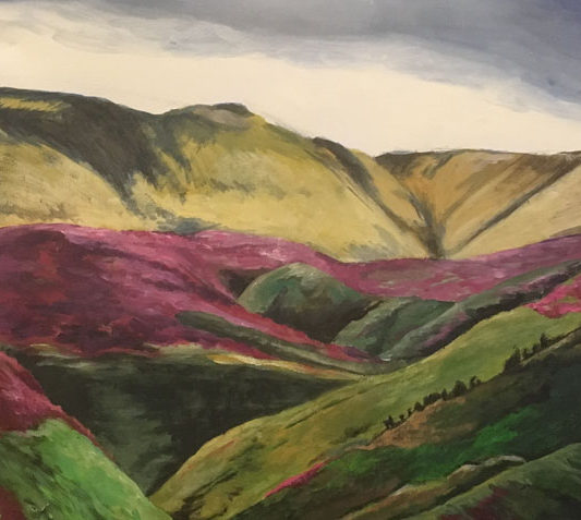 North York Moors by Emily Dewsnap