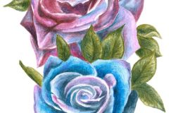 Rose-Tattoo-Commission-colour-pencils-emily-dewsnap-art