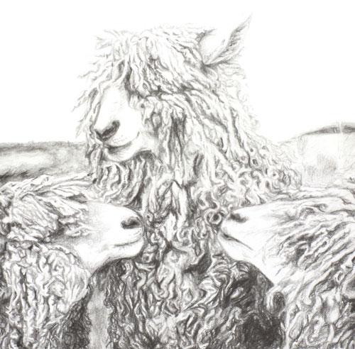 woolly-heep-pencil-drawing-emily-dewsnap